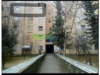 Appartement f3 situé à medea centre