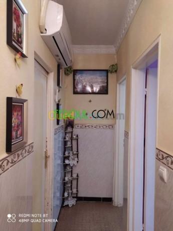 appartement-f3-situe-a-medea-centre-big-7