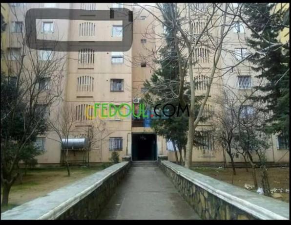 appartement-f3-situe-a-medea-centre-big-8