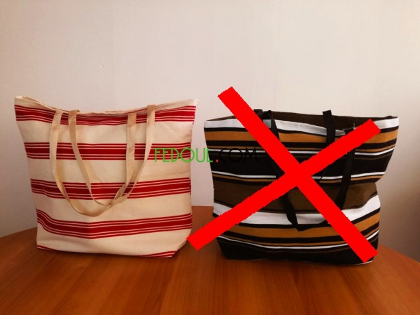 jolies-sacs-pour-femmes-seulement-avec-1000-da-big-2