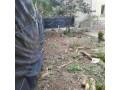 terrain-a-bordj-el-bahri-small-11