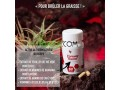 forever-detox-perdre-le-poid-small-4