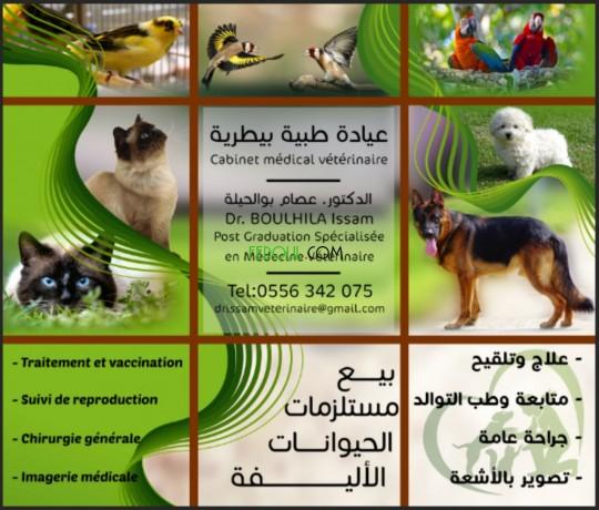 cabinet-veterinaire-big-0