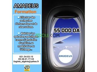 FORMATION AMADEUS COMPLETE 100% PRATIQUE