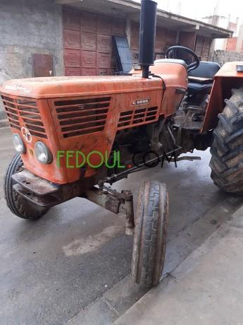 tracteur-cirta-1981-grar-syrta-big-3