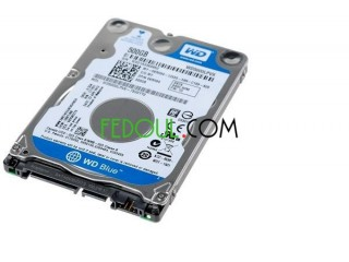 HDD 500GB WD + Boite disque dure externe
