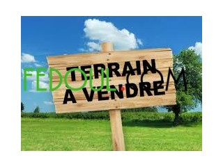 Un lot de terrain a vendre