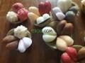 savon-et-cosmetique-diy-100-naturel-small-11