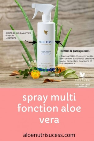 forever-aloe-first-big-2