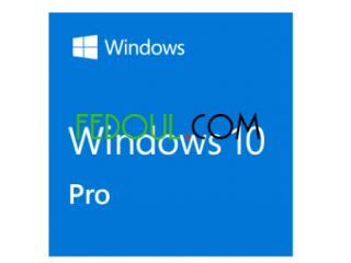 Windows 10 pro Office home and business 2019 Office pro 2019