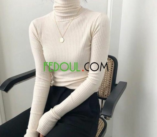 pulls-colle-roule-tendance-big-0