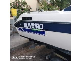Barletta 204 sunbird