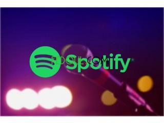 Spotify 12 mois