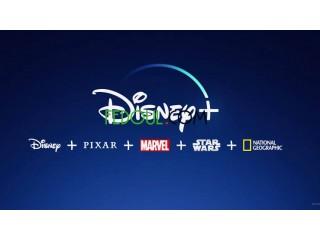 Disney + ( 12 mois )