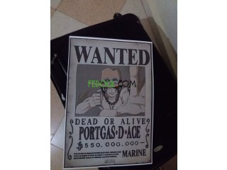 Posters wanted -one piece-