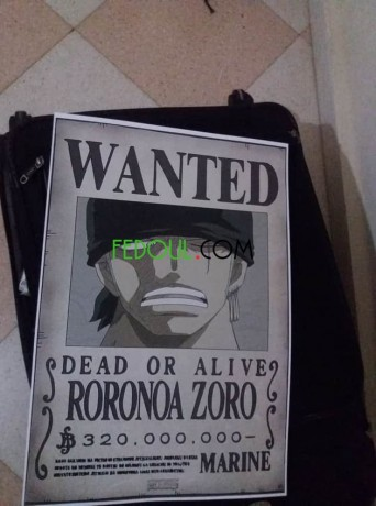 posters-wanted-one-piece-big-18