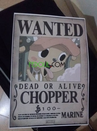 posters-wanted-one-piece-big-16