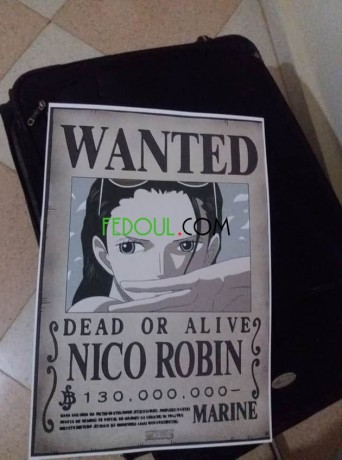 posters-wanted-one-piece-big-17