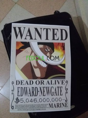 posters-wanted-one-piece-big-10
