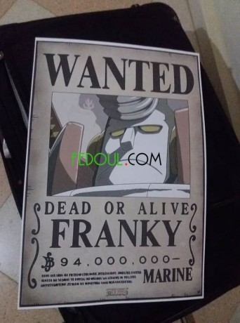 posters-wanted-one-piece-big-8