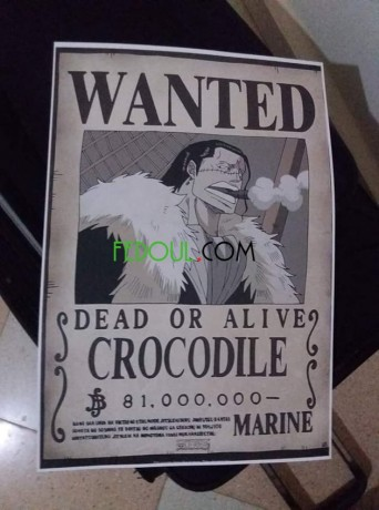 posters-wanted-one-piece-big-1