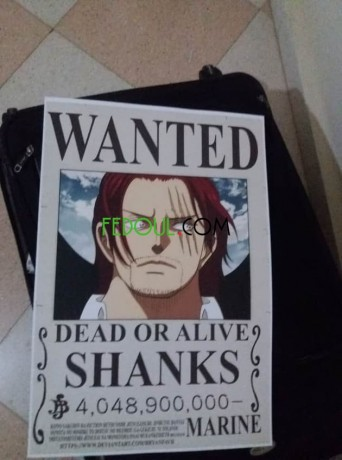 posters-wanted-one-piece-big-9