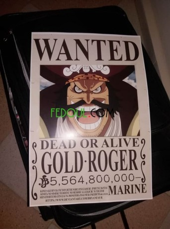 posters-wanted-one-piece-big-4