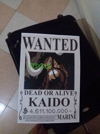 posters-wanted-one-piece-big-14