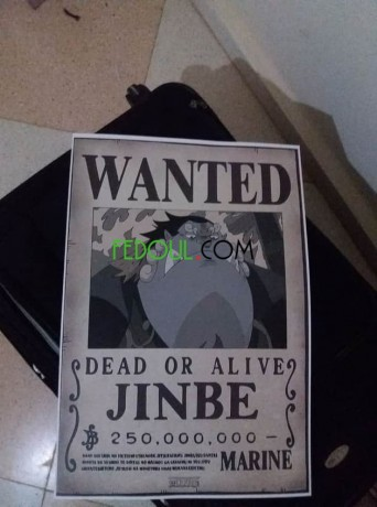 posters-wanted-one-piece-big-12