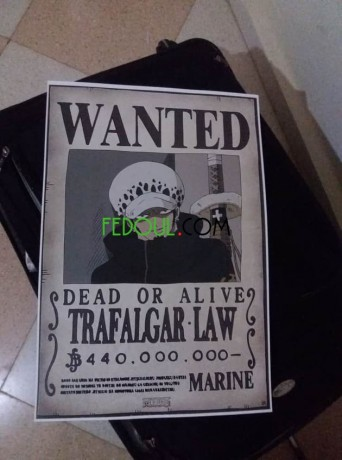 posters-wanted-one-piece-big-7