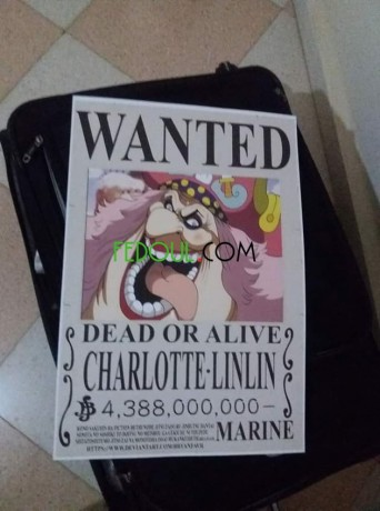 posters-wanted-one-piece-big-2