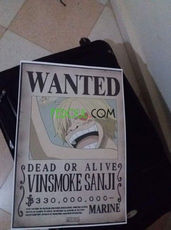 posters-wanted-one-piece-big-3