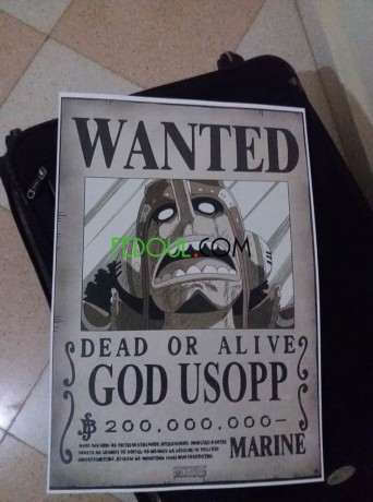posters-wanted-one-piece-big-13