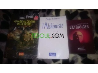 Des romans français