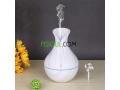 diffuseur-arome-et-humidificateur-dair-maatr-omrtb-llgo-aal-shkl-mzhry-annaba-small-2