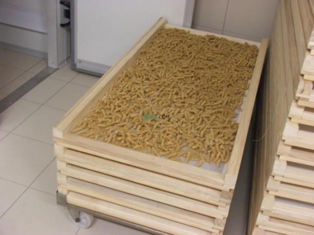 ligne-de-production-de-pates-alimentaires-big-5