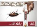 killer-gel-anti-cafard-small-0