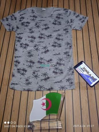 t-shirt-big-8
