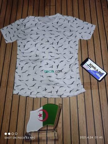 t-shirt-big-7