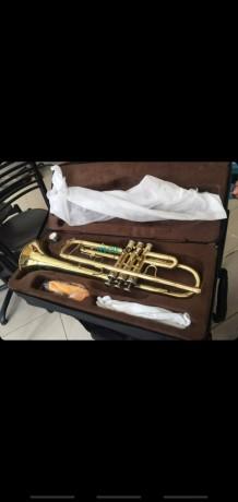 trumpet-big-1