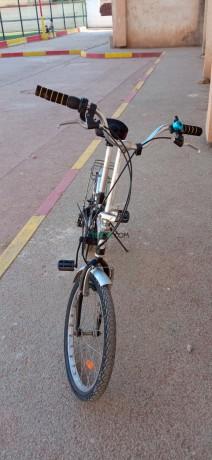 velo-topbike-pliable-jaya-big-4