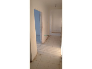 Appartement f3 a vendre belgaid oran