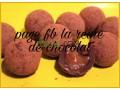 truf-au-chocolat-trof-bshokola-small-3