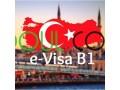 visa-electronique-b1-pour-la-turquie-small-0