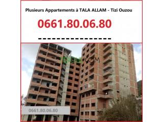 Plusieurs Appartements (Semi-fini) en vente - Tala Allam - Tizi Ouzou
