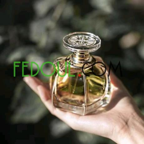 des-parfums-de-marques-big-16