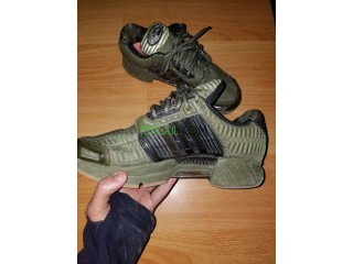 Climacool adidas chaussure