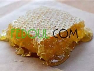 عسل حر و زيت الزيتون-miel et l huile d olive