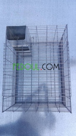 cages-pour-animaux-big-9