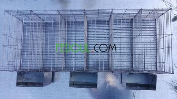cages-pour-animaux-big-2
